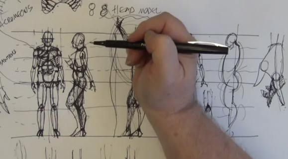 Drawing Anatomy: Male, 3 of 4