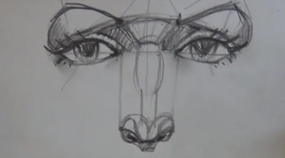Drawing Eyes and Nose - Manikin Head, 3 of 5