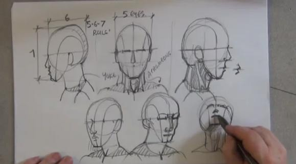Drawing Head and Face - Manikin Head, 1 of 5